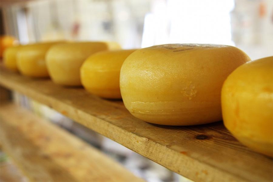 3dutcherfamers-holland-cheese
